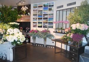 Visuel Flowers gallery 1