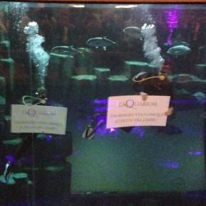 L'Aquarium, un nouveau lieu des nuits parisiennes branchées.