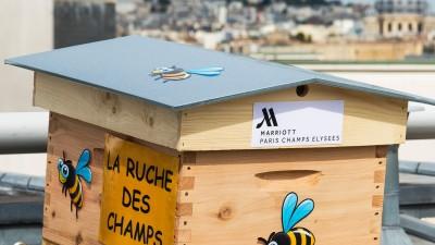 La ruche du Marriott Champs Elysées et ses petits pots de miel