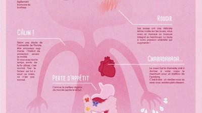 Once – Quels sont les effets de l'amour sur le corps humain ?