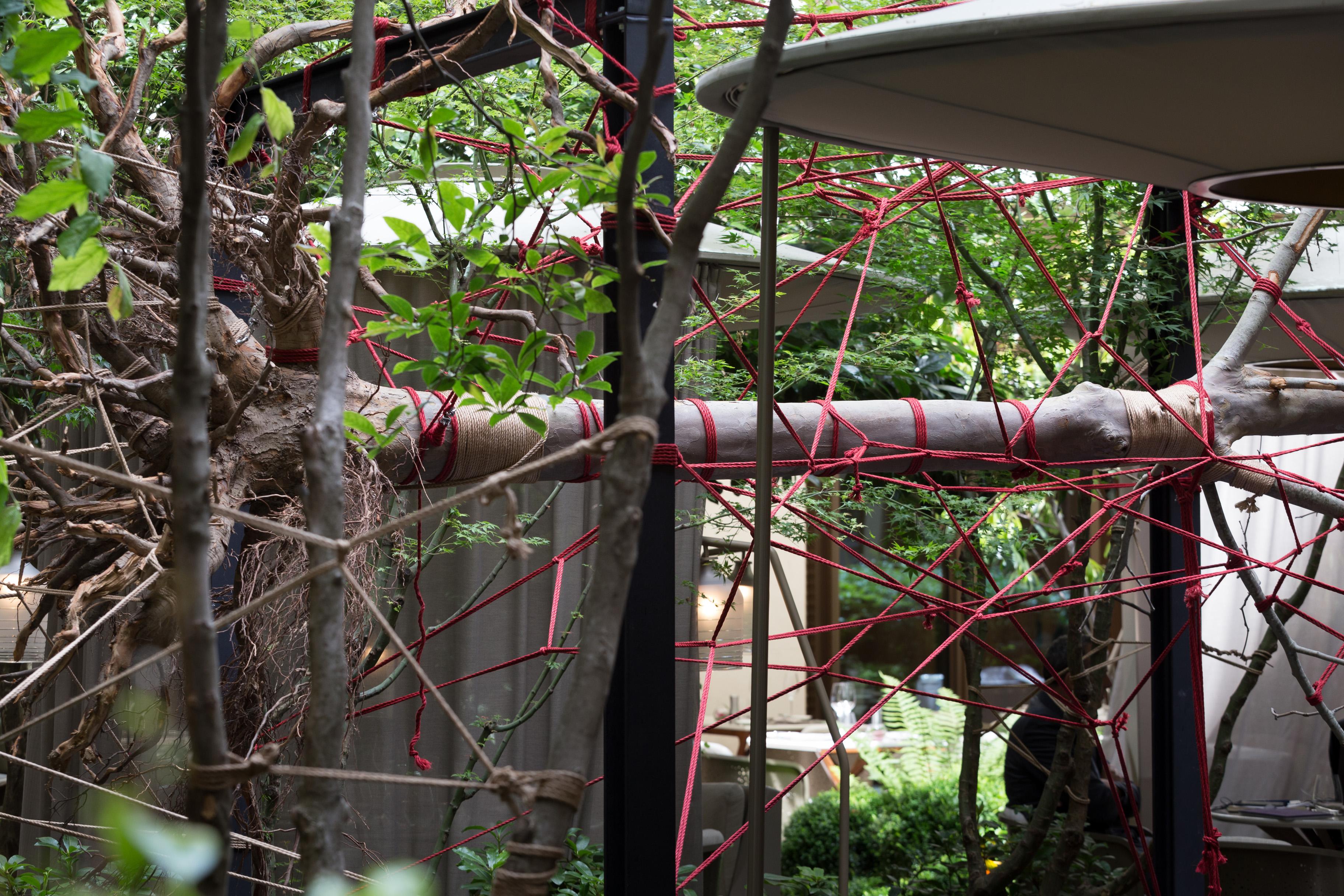 the red garden de christophe gautrand pour tanqueray l 39 audace au mandarin oriental paris. Black Bedroom Furniture Sets. Home Design Ideas