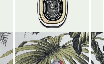 diptyque –  eau de parfum Vétyverio